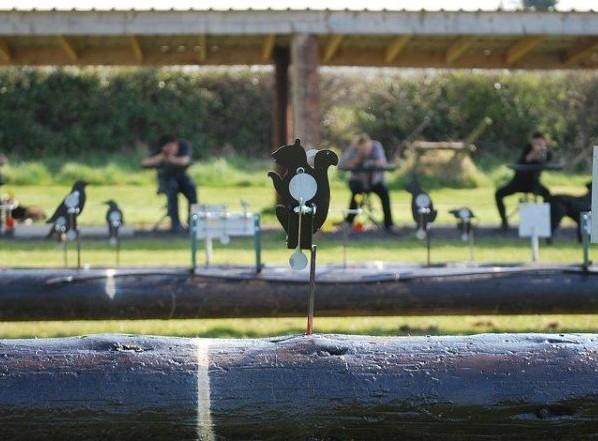 Air Rifle Shooting at Abbeyfield Farm